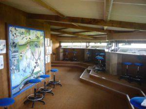 l'observatoire de la réserve naturelle de st Denis du Payré en vendée