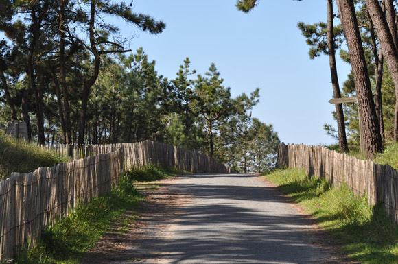 Sentiers Vendée