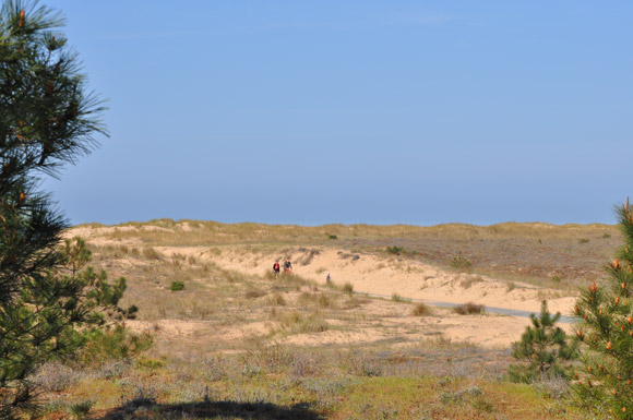 camping en bord de mer plage Vendée